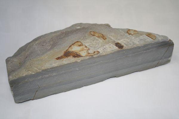内曇 原石  硬口